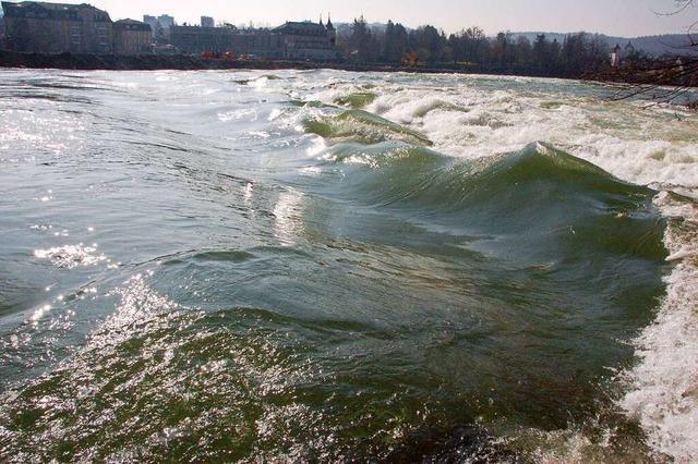 Erneut endet ein Bad im Rhein tödlich