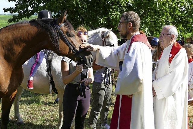 Festgottesdienst und Pferdesegnung vor der Pantaleonskapelle