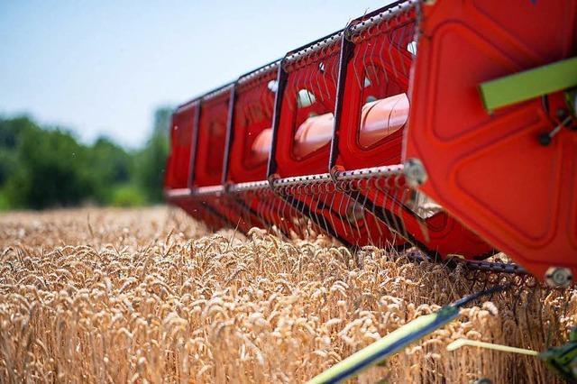Die Bauern brauchen Hilfe, aber aus der Dürre-Notlage müssen auch Lehren gezogen werden
