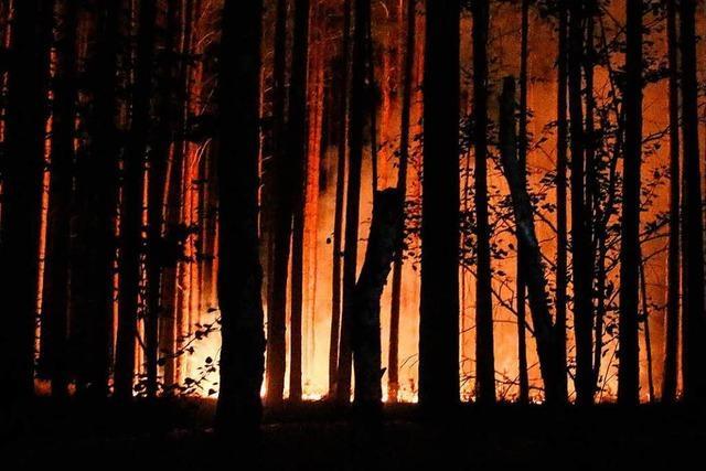 Waldbrandgefahr im Südwesten steht auf höchster Stufe