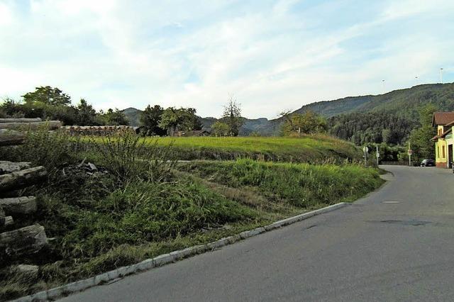 Entwurf für Bebauungsplan Kaiden in Hasel beschlossen