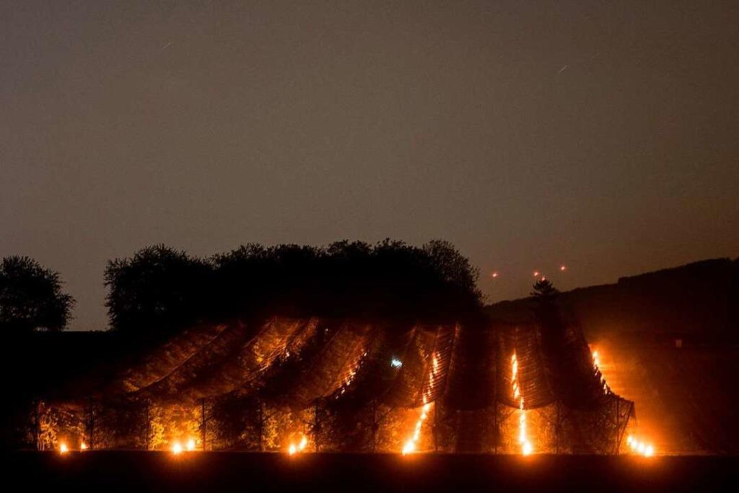 Kerzen in der Obstplantage  | Foto: dpa