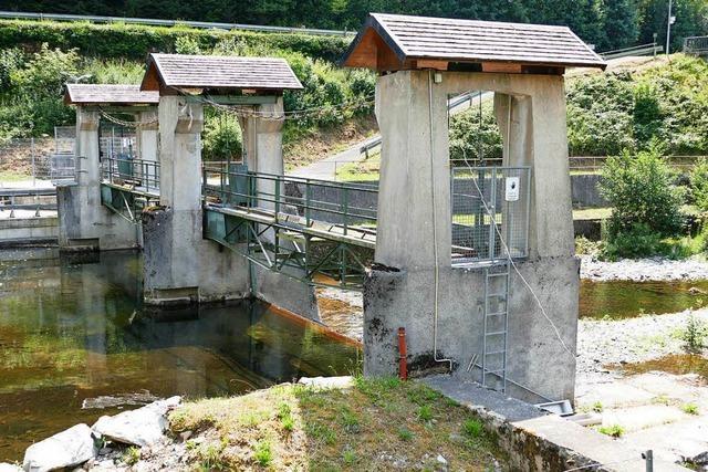 Den Flüssen im Landkreis Lörrach geht das Wasser aus