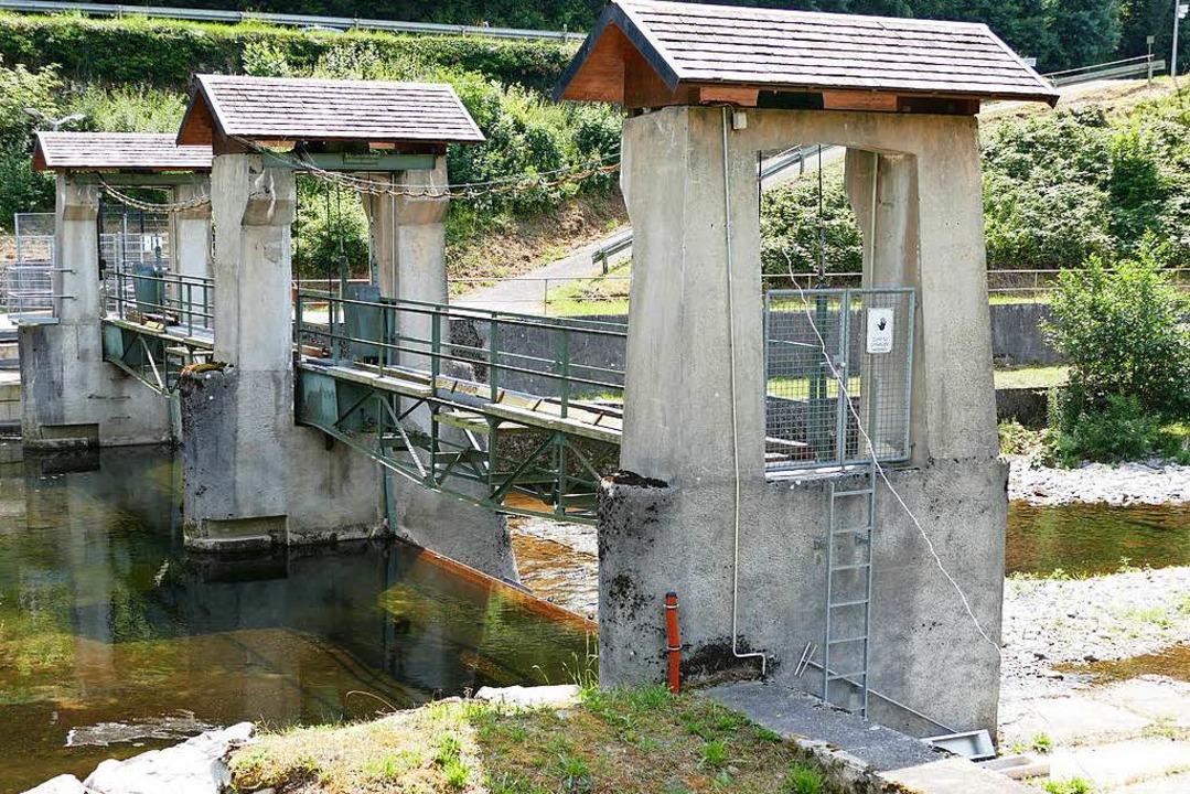Die Wasserkraftwerke entlang der Wiese...t so niedrig wie zuletzt im Jahr 2003.  | Foto: Sattelberger