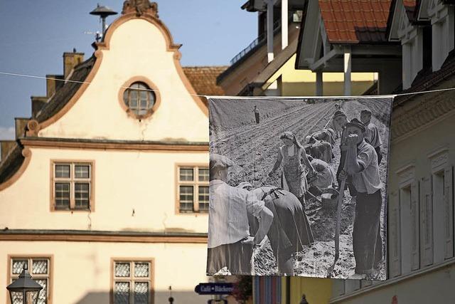 Kaiserstühler Leben in den 50er-Jahren