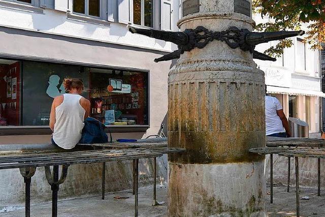 Bürger in Lörrach sollen die städtischen Bäume gießen