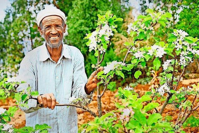 Das wundersame äthiopische Apfelwunder