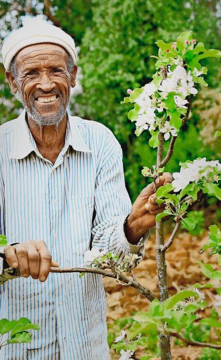 Bauer Beley Gebeye und ein blühender Apfelbaum  | Foto: Tesfaye Agdisa