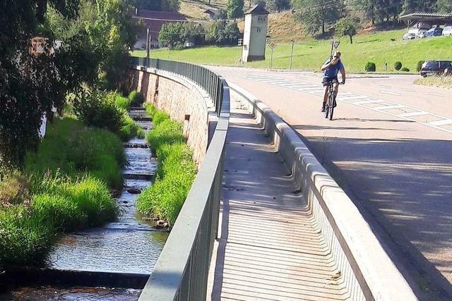 Der Radweg Rhein-Schuttertal könnte 2020 fertig sein