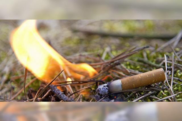 Waldbrandgefahr – was kann man tun?