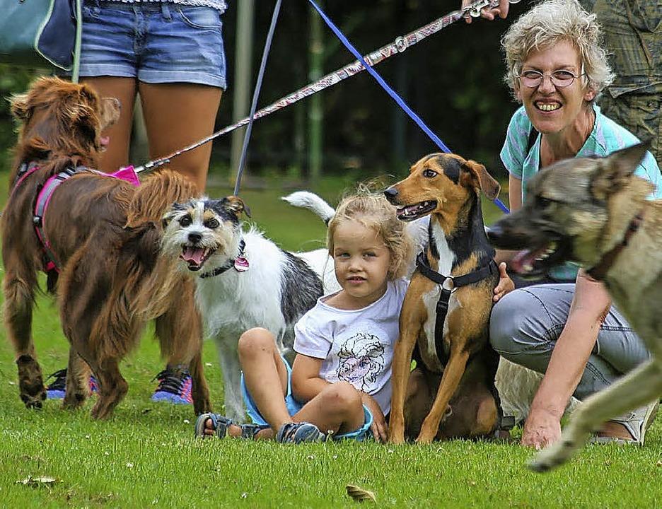 Familienleben mit Hund  | Foto: Sandra Decoux-Kone