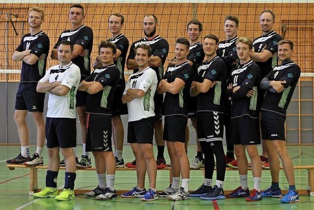 Volleyballer steigen in die Regionalliga auf