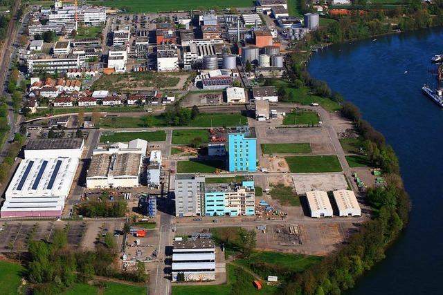 Nicht nur der Industrie macht der Wassermangel am Rhein zu schaffen
