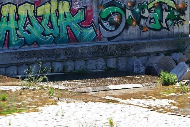 Kein Wasser aus Bächen und Flüssen im Kreis Lörrach entnehmen