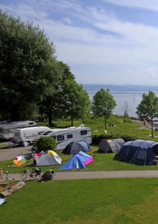 Blick auf den See  | Foto: Marion Klötzer