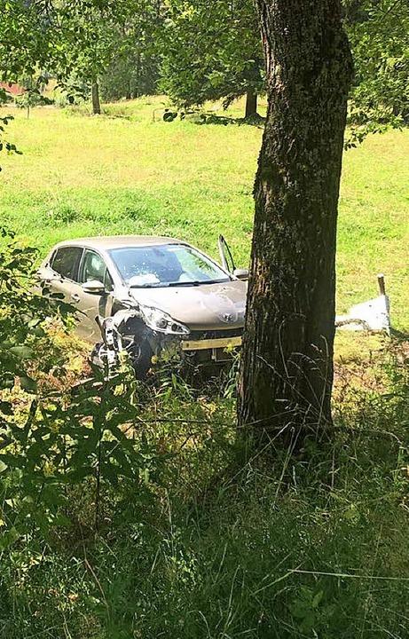 Der Unfallwagen fährt über die Böschun...kommt auf einer Viehweide zum Stehen.     Foto: Kamera 24