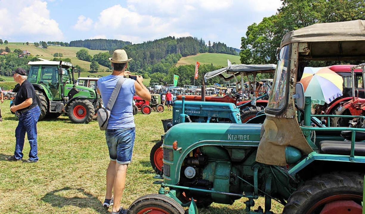 Mehr als 500 Oldtimer kamen zusammen u...mit ihren Traktoren sind (links oben).    Foto: Erich Krieger