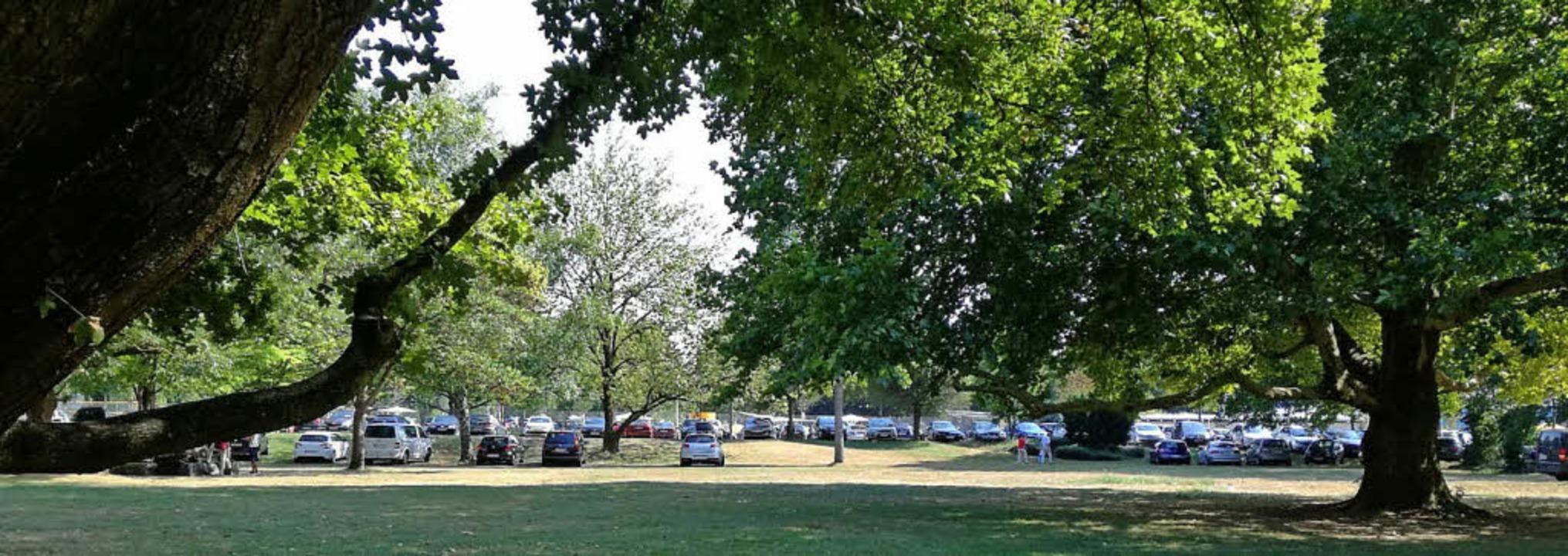 Bürgerpark(platz): Die Fotos entstande...rken verärgert Anwohner schon länger.     Foto: Barbara Buchele