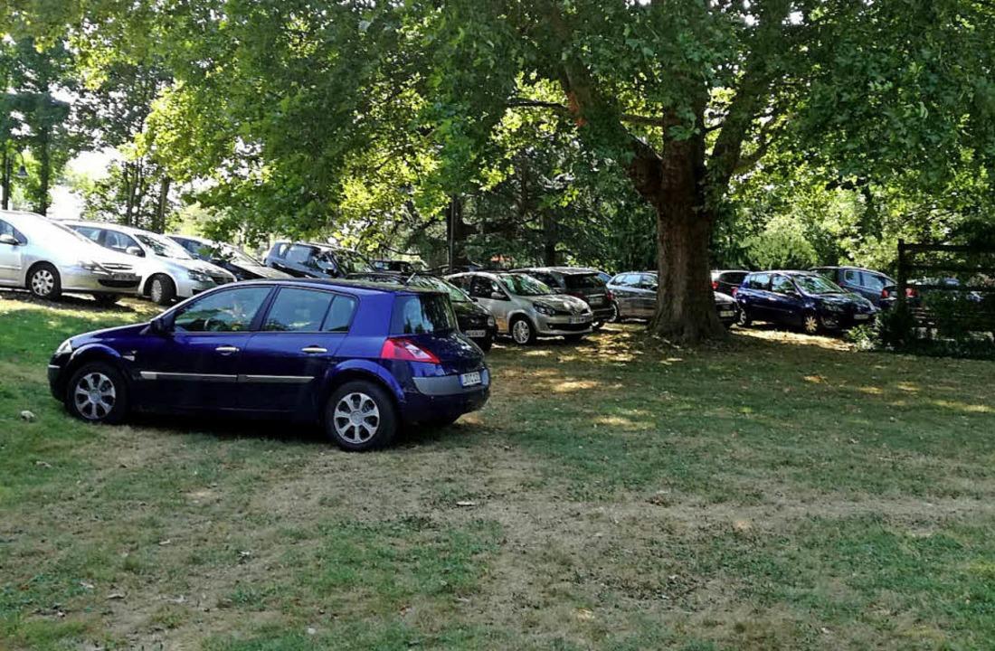 Schattiges Plätzchen und mit der Gefah...echt günstig: Parksünder im Bürgerpark    Foto: Barbara Buchele