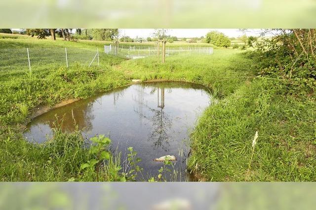 Wider die Dürre