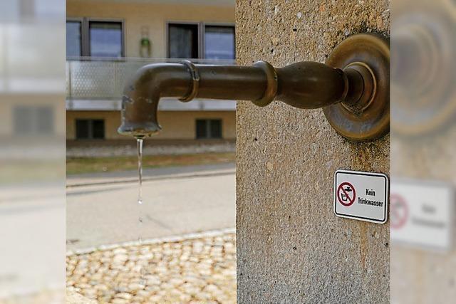 Brunnenwasser soll Fischen dienen