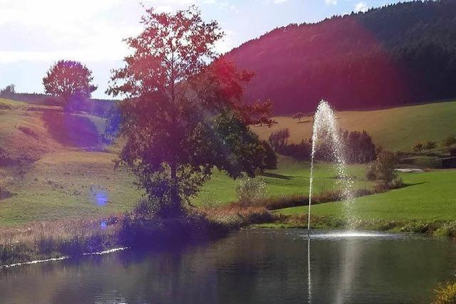 Die Quellen im Schuttertal liefern weniger Wasser