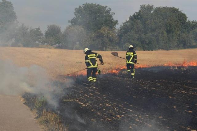 Warum fangen Stoppelfelder in der Region Feuer?