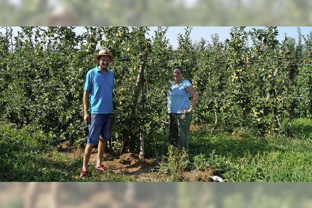 Landwirte wollen Tiefbrunnen bauen