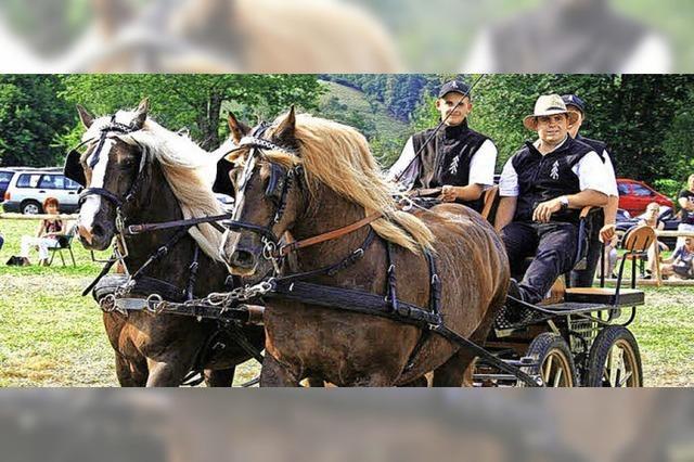Im Zeichen der Pferde und der Heimat