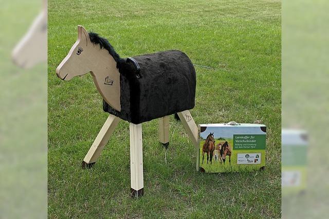 Holzpferde für Kindergärten