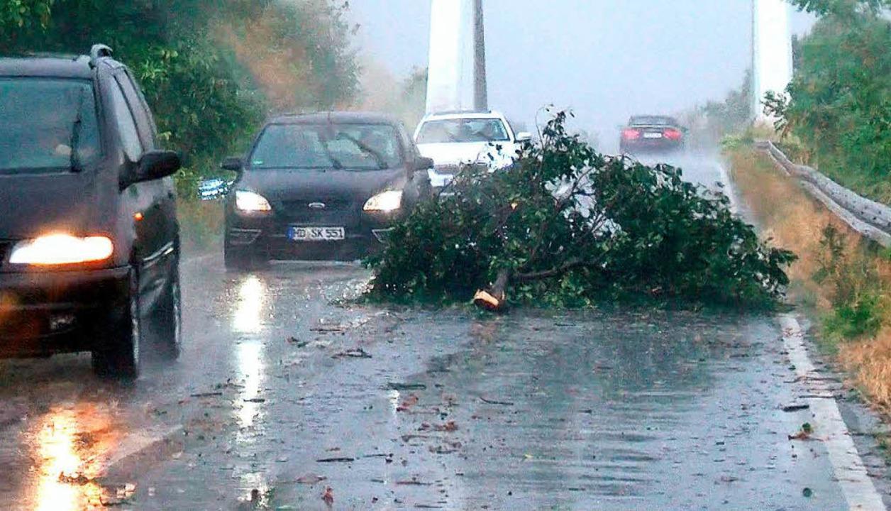 Ein großer Ast liegt nach einem Starkregen und Sturm auf einer Straße  | Foto: dpa