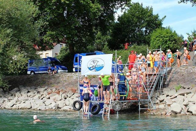 355 schwammen unter den Brücken