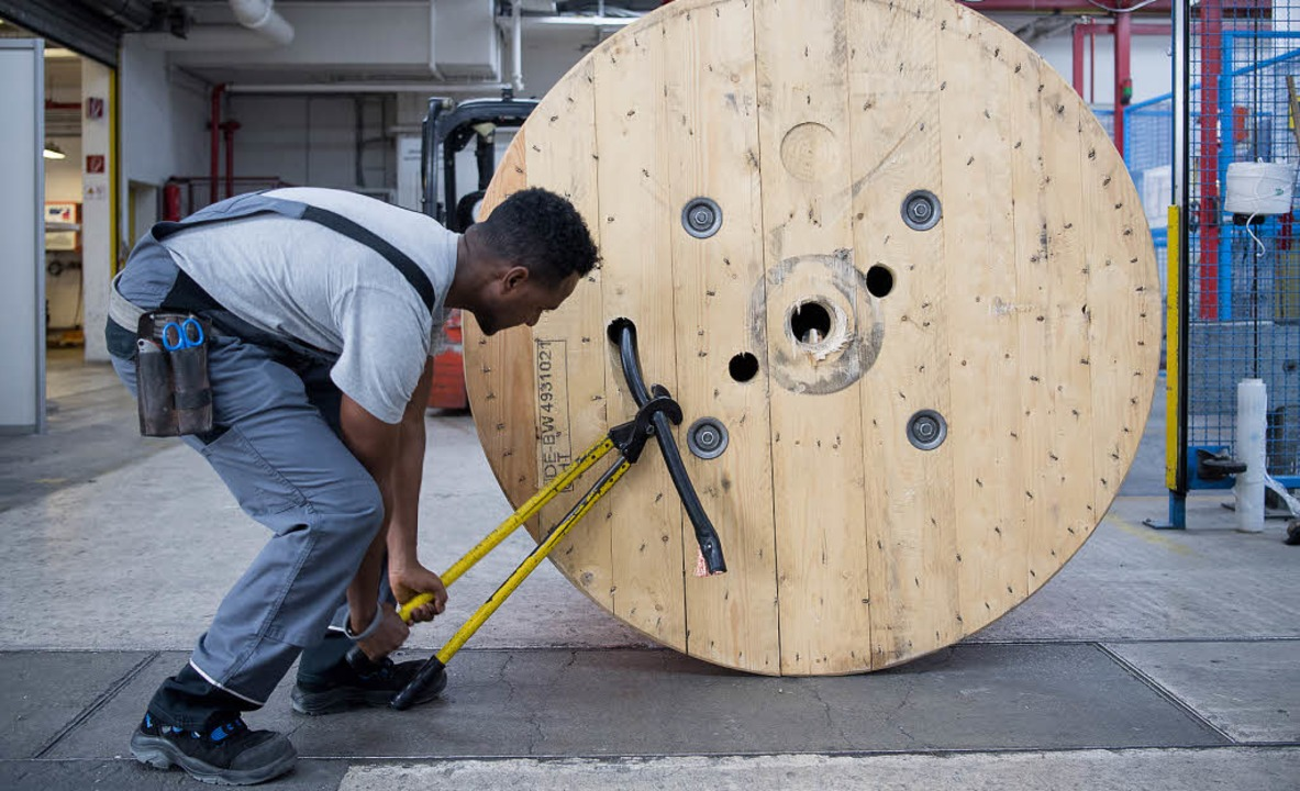 Fachkräfte sind in vielen Branchen rar...t arbeiten – obwohl sie wollen.   | Foto: dpa/rol