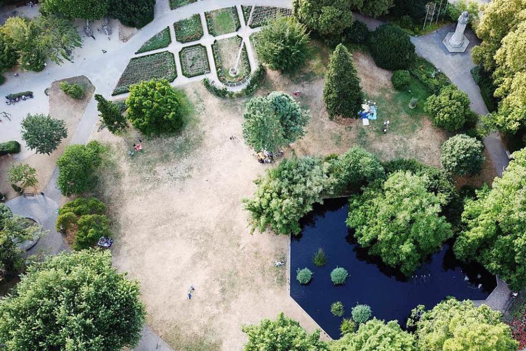 Stadtgarten  | Foto: Michael Saurer
