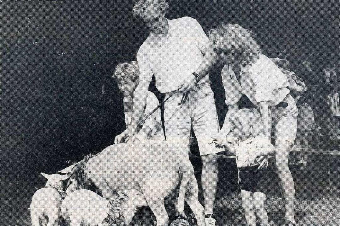 Das Schaf Schmadtke  | Foto: Privat