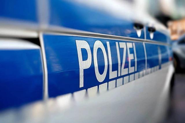 Platzverweise und Anzeigen in Lörrach nach nächtlichem Gegröle