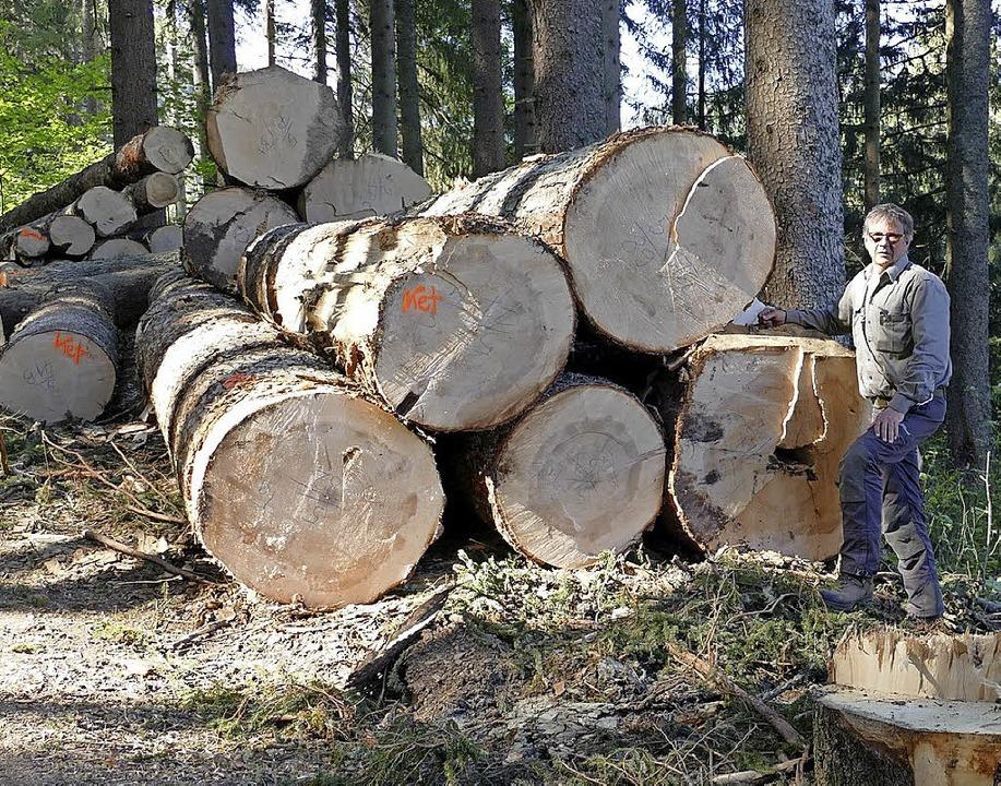Aufgearbeitet und nach Holzsorten klassifiziert.  | Foto: Ralf Morys