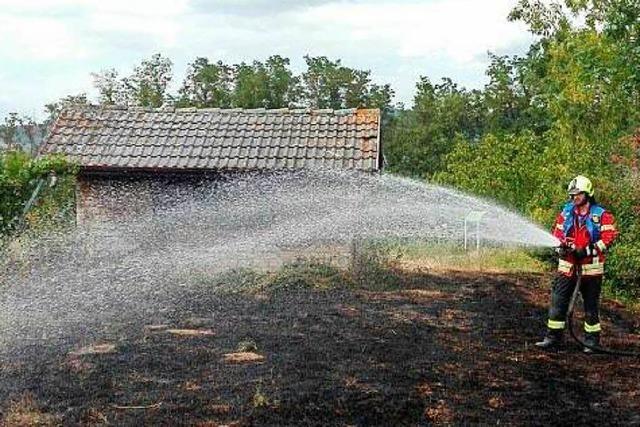 Vegetationsbrand bei Gottenheim