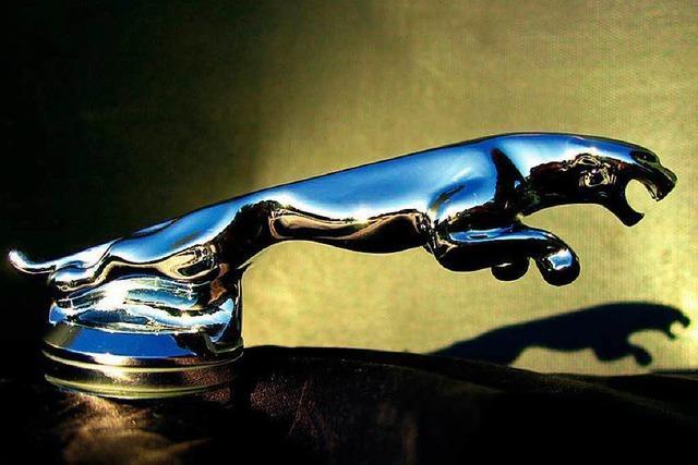 Rheinfelden: 42-Jähriger fährt Jaguar zu Schrott
