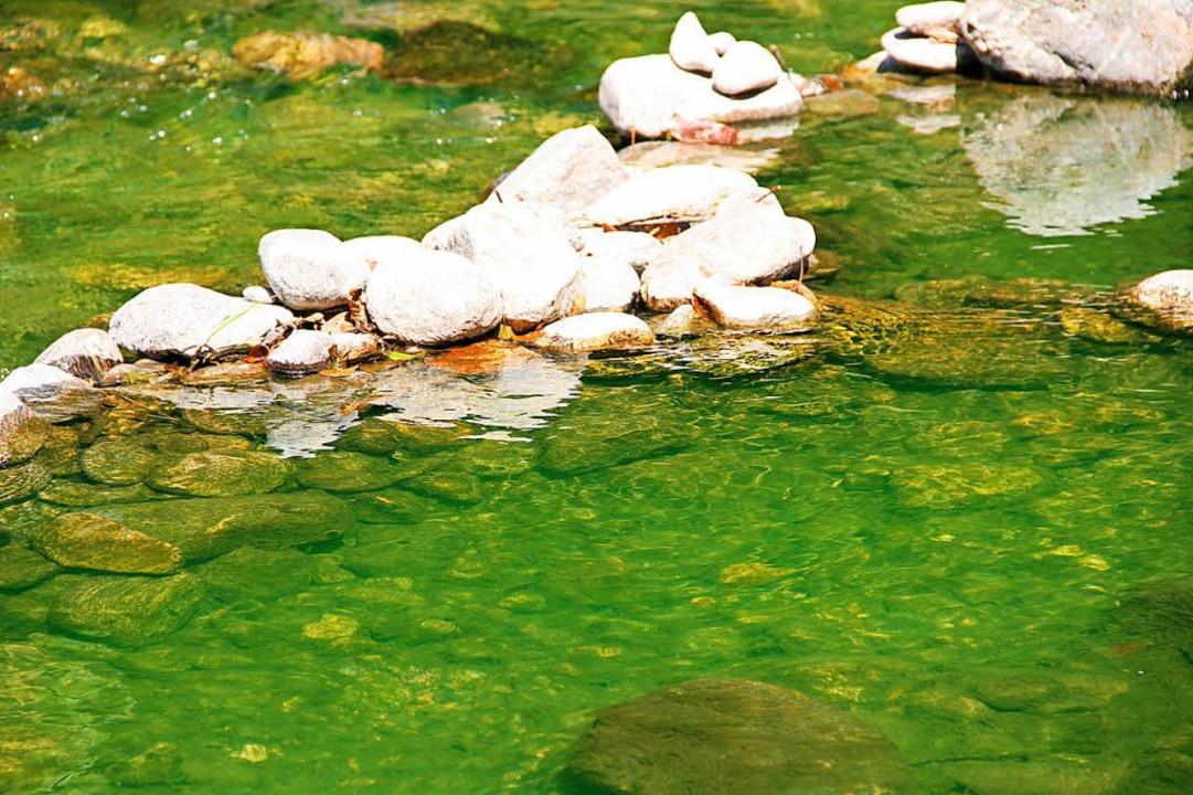 Da die Fließgeschwindigkeit des Flusse...e Verfärbung wohl eine Weile andauern.  | Foto: Alexander Link