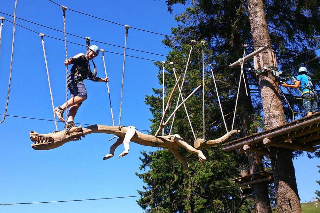 Über 700 Meter führt die Strecke im Kl...zu 12 Meter Höhe durch die Baumwipfel.  | Foto: Promotion