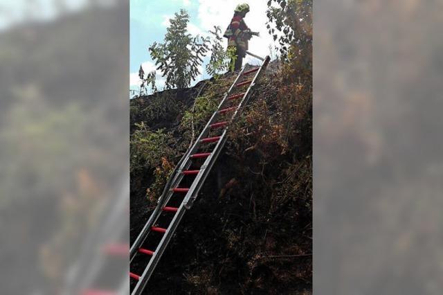 Böschungsbrand bei Gottenheim