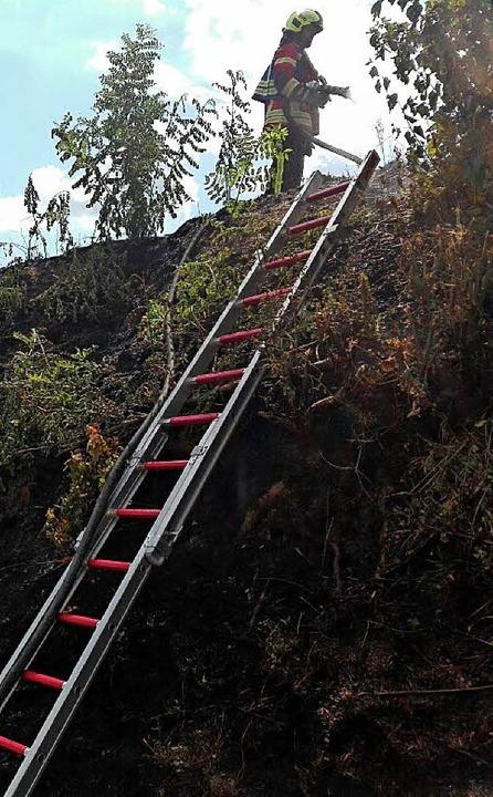 | Foto: Feuerwehr