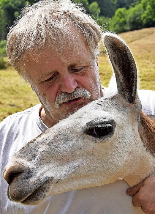 Uwe Braun mit dem Lamabullen  Paco.  | Foto: Robert Bergmann
