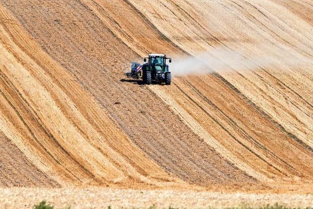 Acht Bundesländer melden Dürre-Schäden in Milliardenhöhe