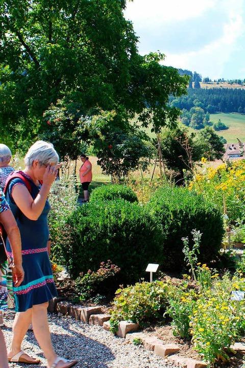 Besuch im Kräutergarten    Foto: Erich Krieger