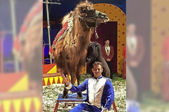 Zirkus gastiert in Münchingen