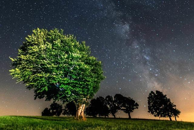 Sternschnuppenjagd auf dem Schauinsland