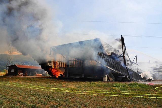 Feuer zerstört Stall und Scheune – mehrere Rinder getötet