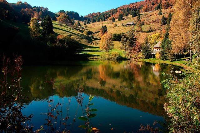Sonniger Herbst am Dobelsee
